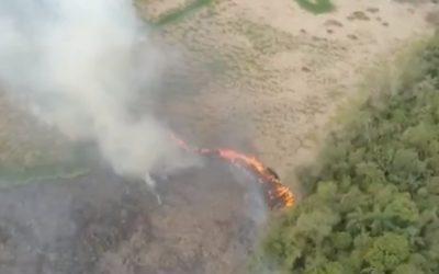 incendio ambiental (Foto Reprodução RPC)