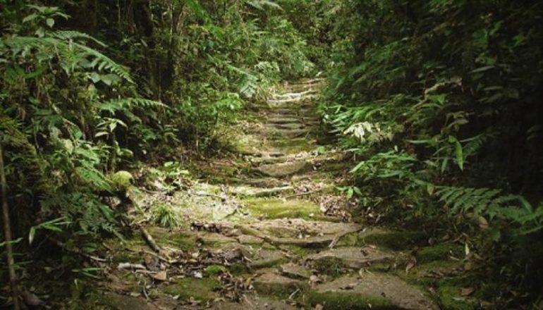 Caminhos do Peabiru